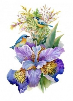depositphotos_159103246-stock-photo-watercolor-flowers-and-birds.jpg